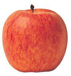 apple-royalgala