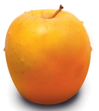 apple-tentation