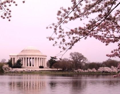 A w DC już wiosna!