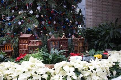 Ogród botaniczny w DC -must see!