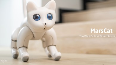 Gato Robot con Inteligencia artificial