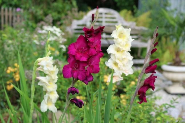 Paradiesgarten Maag, Autorenfamilie mit Gartenleidenschaft
