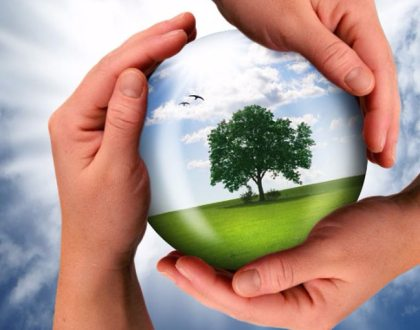 Ue, anche i prodotti finanziari green avranno il loro marchio di qualità?