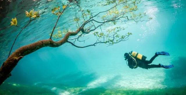 Magisch onderwaterlandschap
