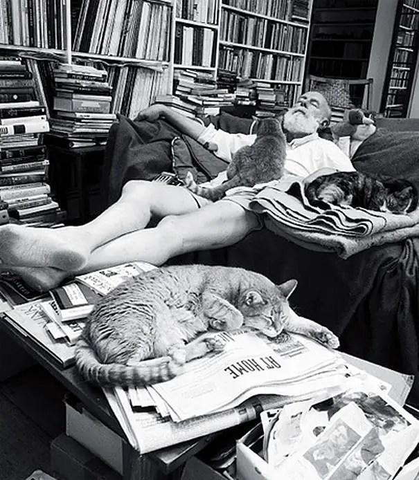 kunstenaars en katten12