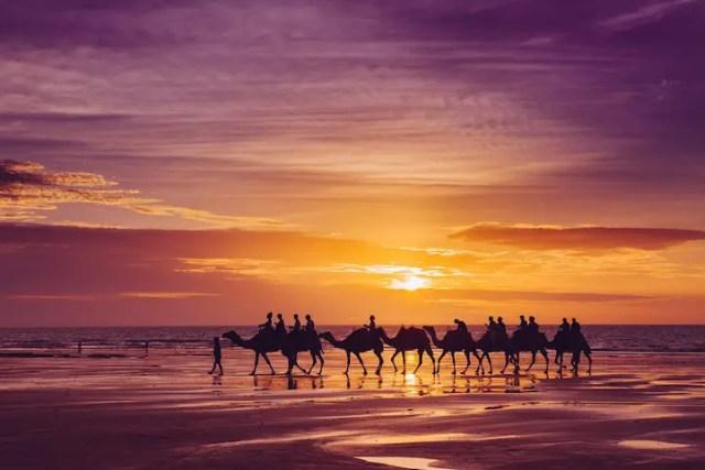 Luchten van Australië | Paradijsvogels Magazine