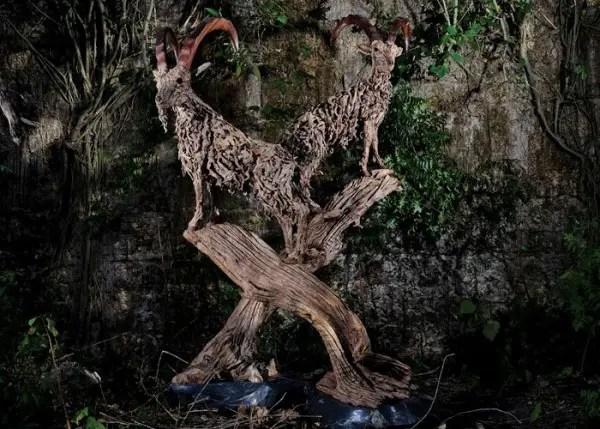 Levensechte beelden van drijfhout | Paradijsvogels Magazine