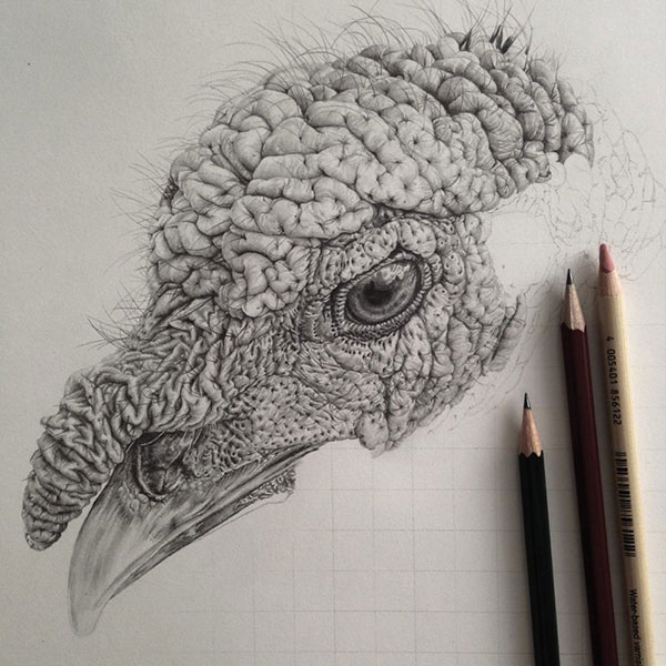 Fotograferen met potlood | Paradijsvogels Magazine