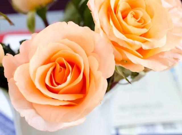 bloemkunst foto of papier12