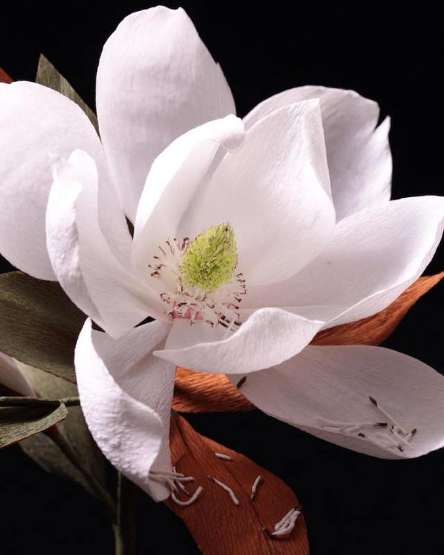 bloemkunst foto of papier15