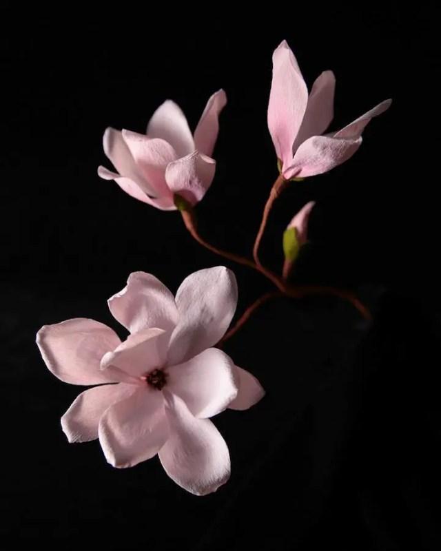 bloemkunst foto of papier19