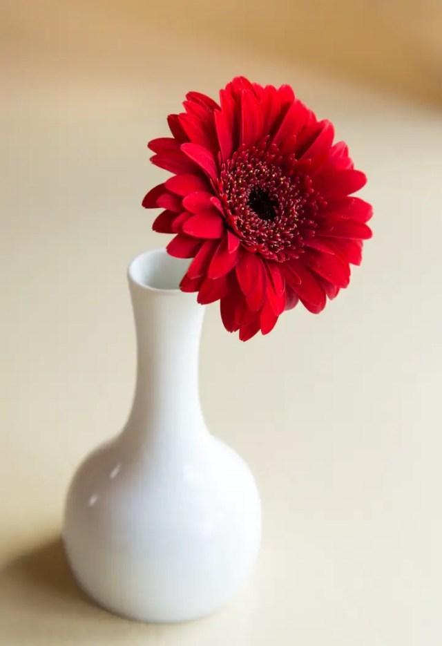 bloemkunst foto of papier20