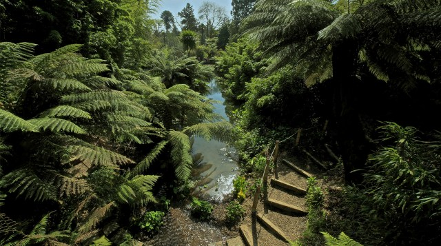 The Lost Gardens of Heligan (10)