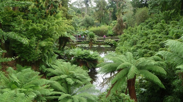 The Lost Gardens of Heligan (11)