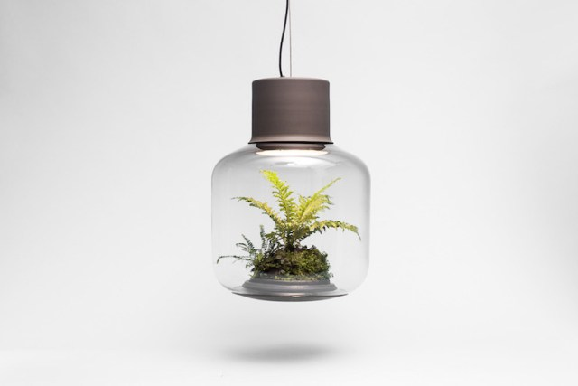 nature-inspired-furniture-21