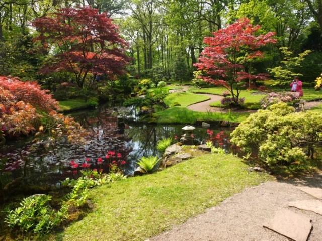 Japanse Tuin uitgelicht