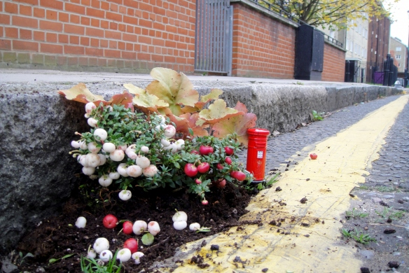 planting-flowers-in-potholes-10