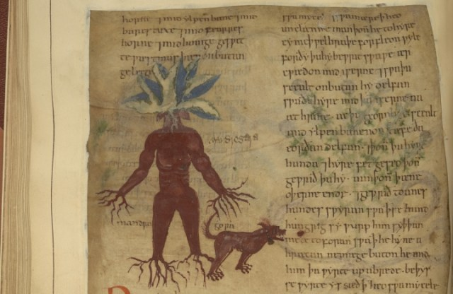 herbal 5