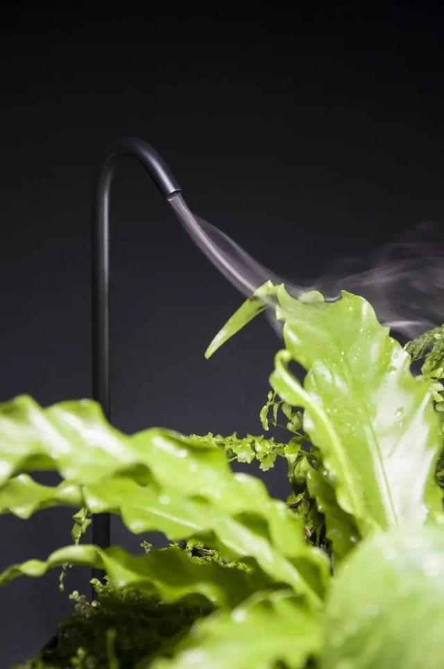 planten licht design 2