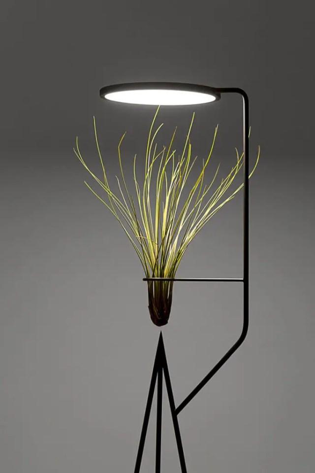 planten licht design 6
