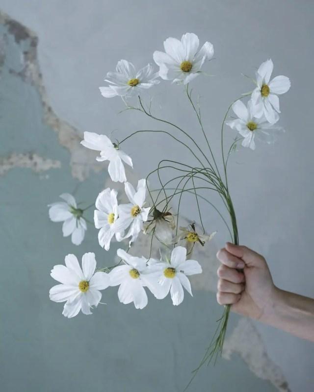 bloemen maken van papier 3