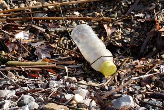 plastic-etende bacterie 6
