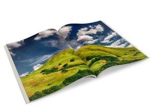 2w3ee business brochure
