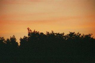landschaft_20060524_2042104823.JPG