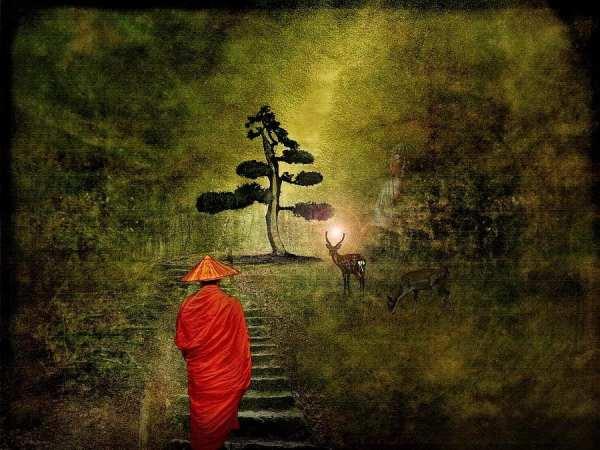 walking-meditation-dreaming-technique