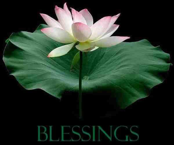 blessings-12
