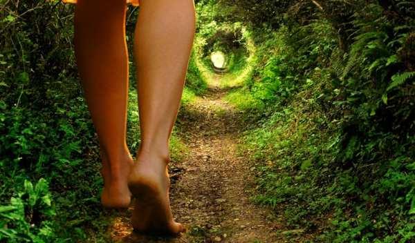 shamanism-path