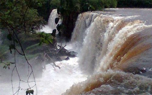 Mariluz Paraná fonte: i2.wp.com