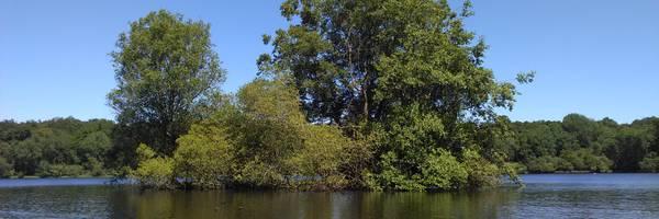 <h3>Gros plan sur les étangs du Perche</h3>