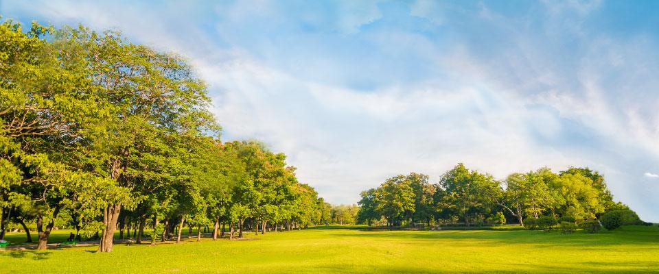 Parc Saint-Ursin