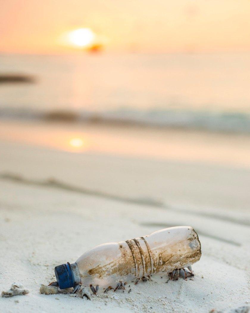 senderismo y sostenibilidad blog de Paredes