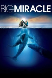 "Poster for the movie ""Big Miracle"""