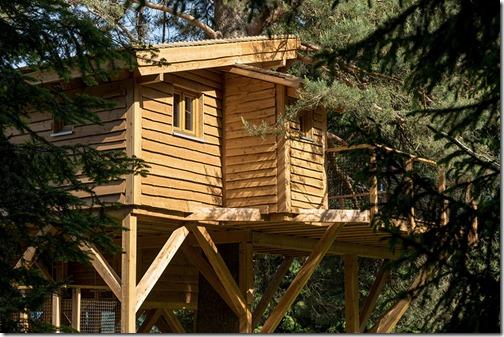 S'isoler dans une cabane dans les arbres?