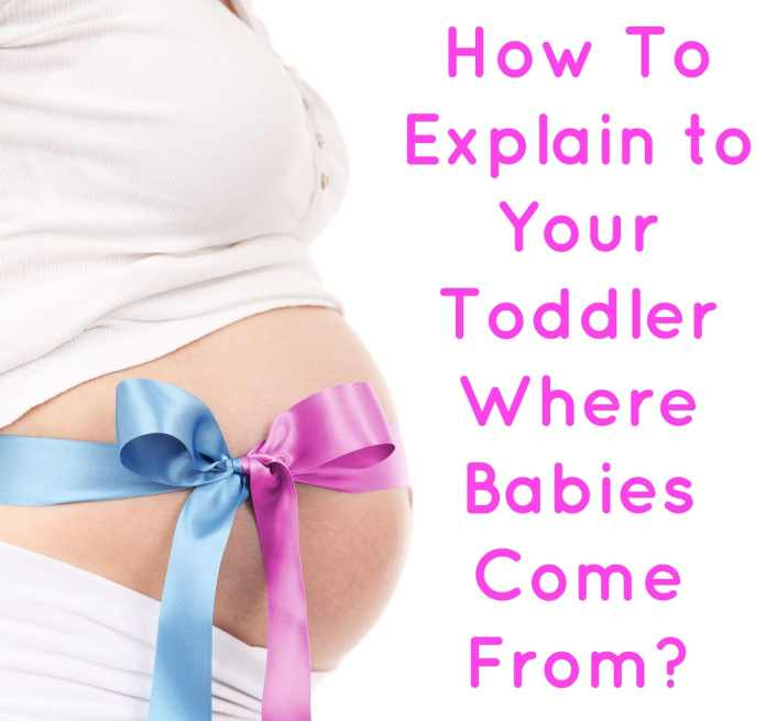 How To Explain to Your Toddler Where Babies Come From