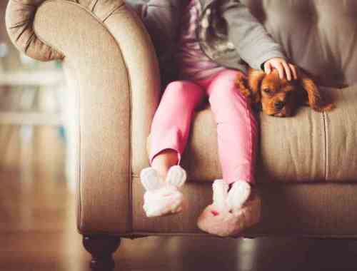 The Pros and Cons of Pets for Children
