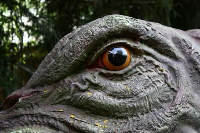 Dinosaures Aventure Nigloland (4)