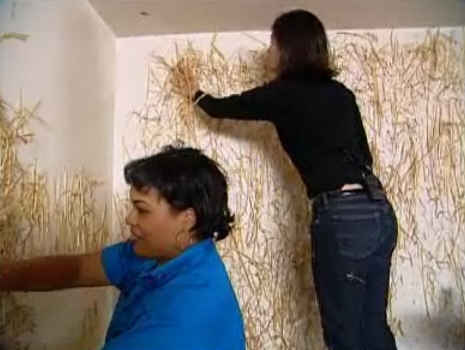 straw on the wall in trading spaces