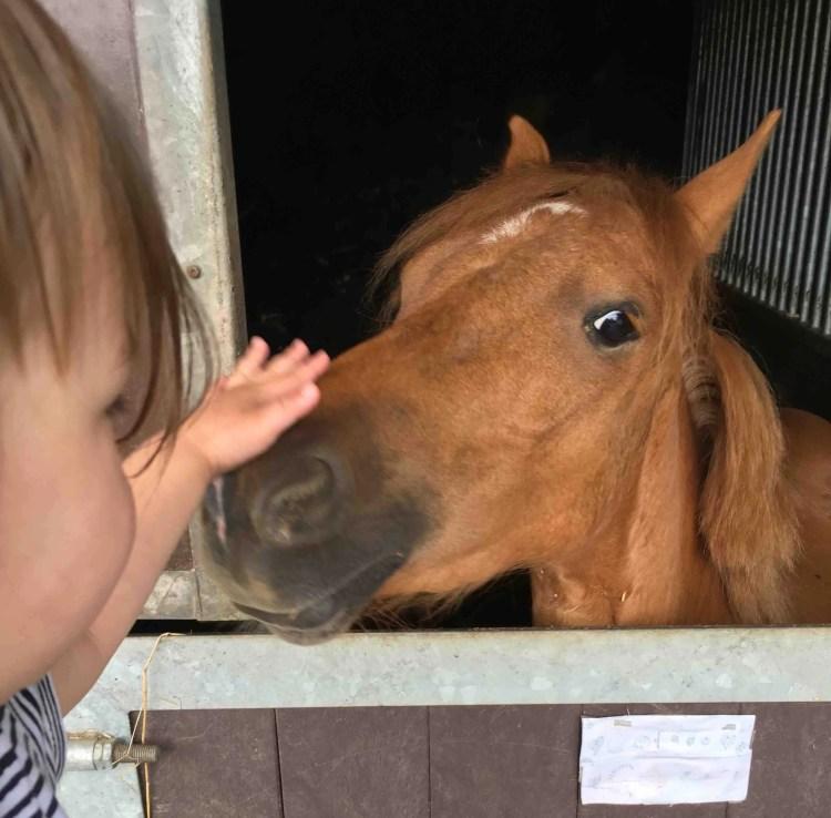 Naar de kinderboerderij met je dochter