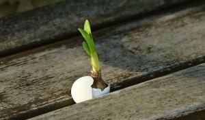 9 Tips for Raising Hope-Filled Kids - Parenting Like Hannah