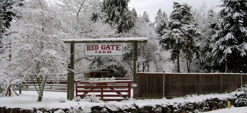 Red Gate Farm Day Camp Amp Riding Lesson Program Parentmap
