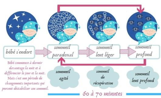 Phases du sommeil de 4 à 9 mois