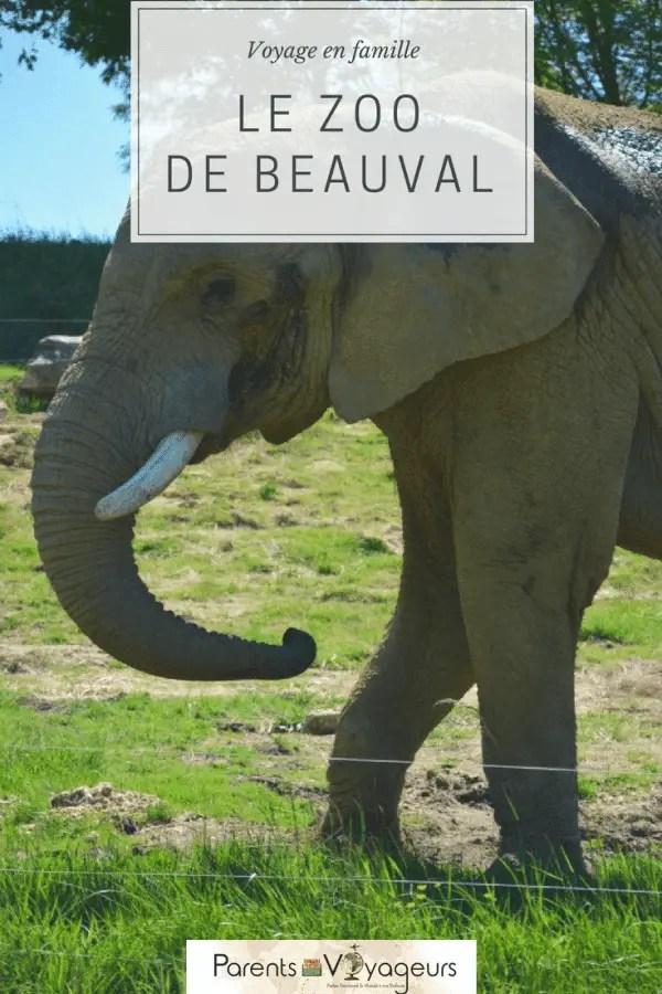 visiter Le Zoo de Beauval avec les enfants