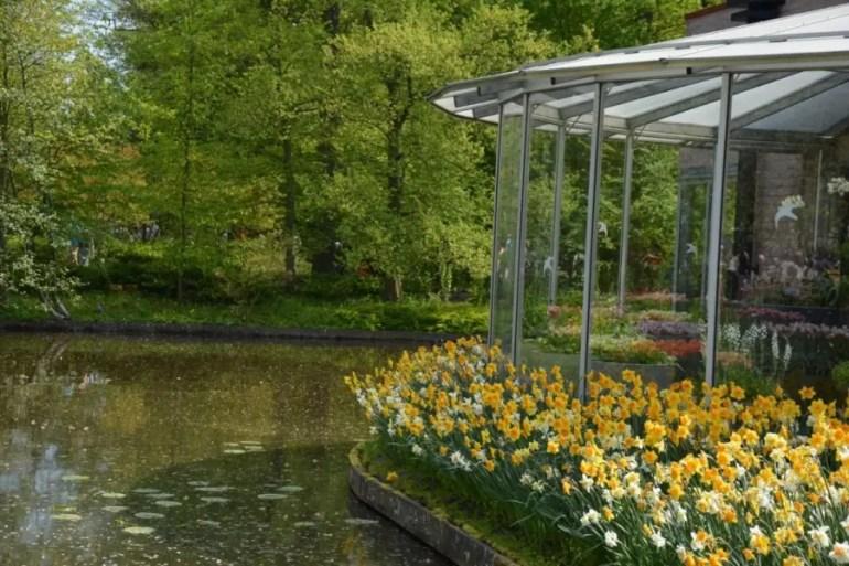 Visiter Keukenhof en famille en 2020 : comment voir les champs de Tulipes aux Pays-Bas.