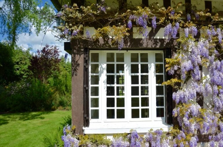 Un week-end en Normandie ! un week-end familial au vert!nature, serquigny,normandie,weekend,famille,enfant,forêt,bébéthumb_DSC_0472_1024