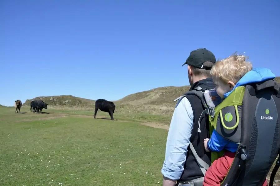 road trip en Ecosse avec des enfants