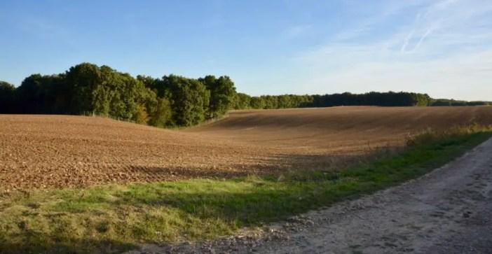 blog-de-voyage-campagne-beauce-voyage-en-famille-nature-champs-champs-de-ble-voyage-et-enfantthumb_dsc_0522_1024